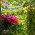 Giverny - jardin de Monet||<img src=./_datas/t/t/0/tt06vj1ymt/i/uploads/t/t/0/tt06vj1ymt/2011/06/04/20110604171759-4a9080a3-th.jpg>