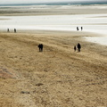 Baie de Somme - Le Crotoy - plage - ombres||<img src=./_datas/t/t/0/tt06vj1ymt/i/uploads/t/t/0/tt06vj1ymt//2014/01/21/20140121062959-8d3a55cf-th.jpg>